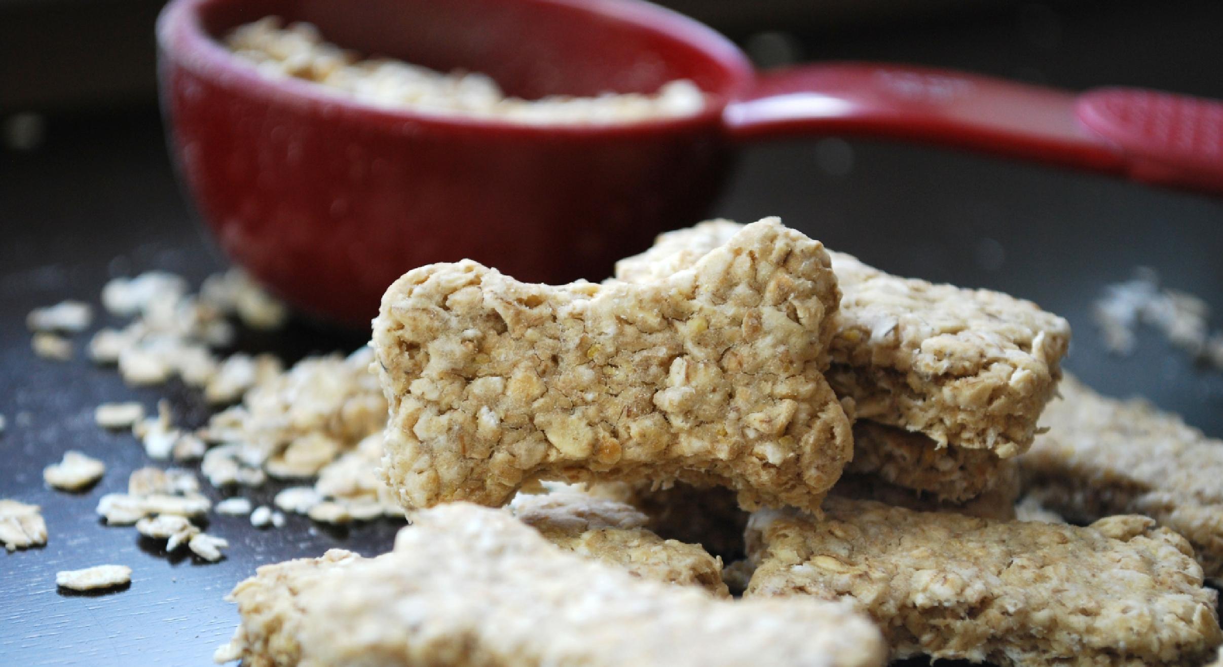Quick Dog Treat Recipes