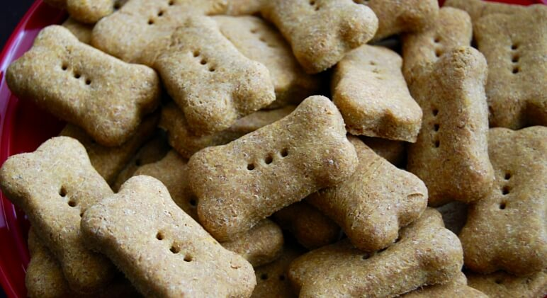 Pumpkin dog treats, like these pumpkin dog biscuits, are a great alternative to what you may find in the pet store. Pumpkin is loaded with great vitamins and minerals for your pooch, including calcium, potassium, and vitamin A.