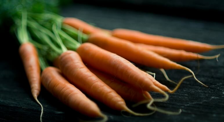 8 Superfoods For Dogs - Carrots