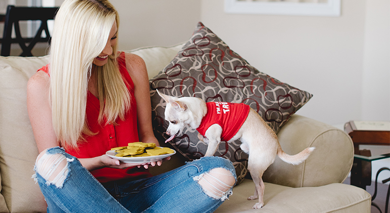 Dog Treat Recipes With Brown Rice