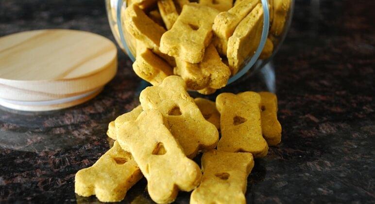 Top 10 Wheat-Free Dog Treats