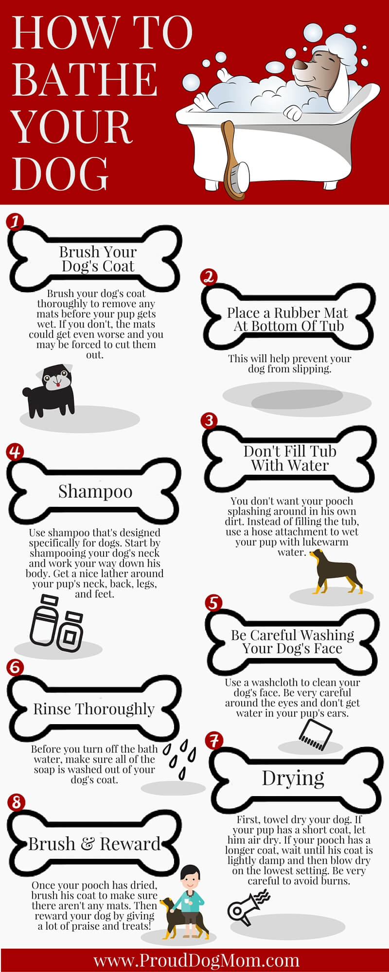 how to bathe your dog infographic 1