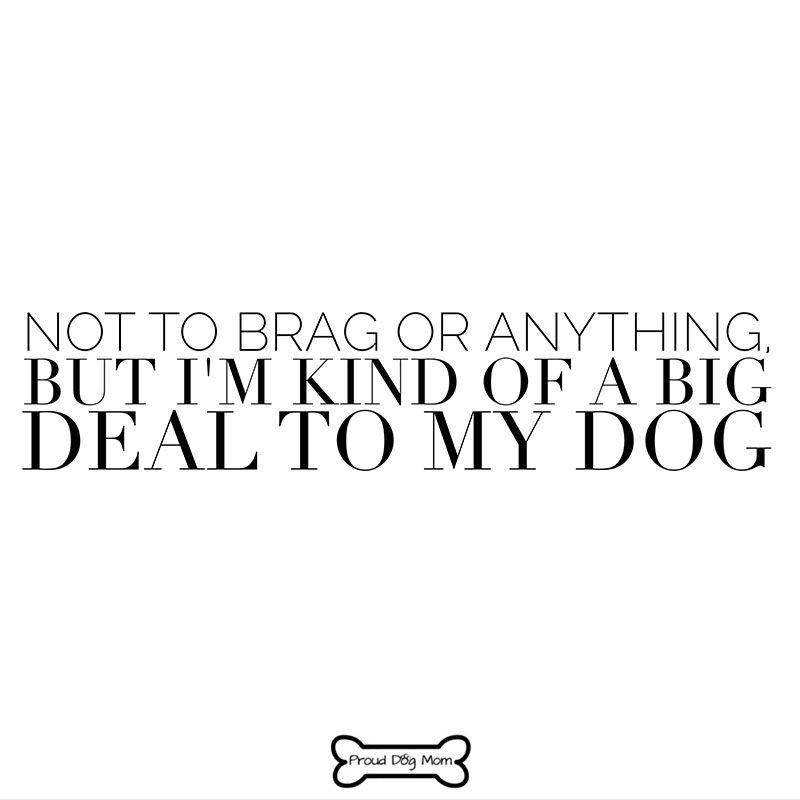 Dog Quotes - Big Deal