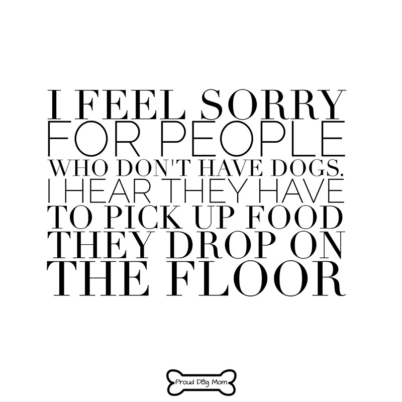Dog Quotes - Food On Floor