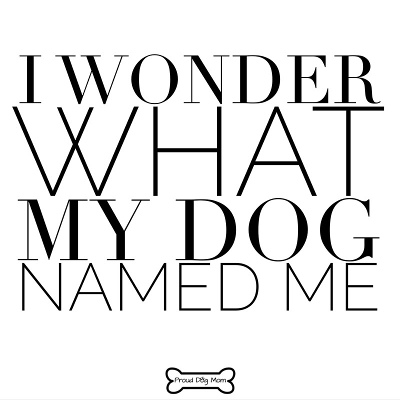 Dog Quotes - Name