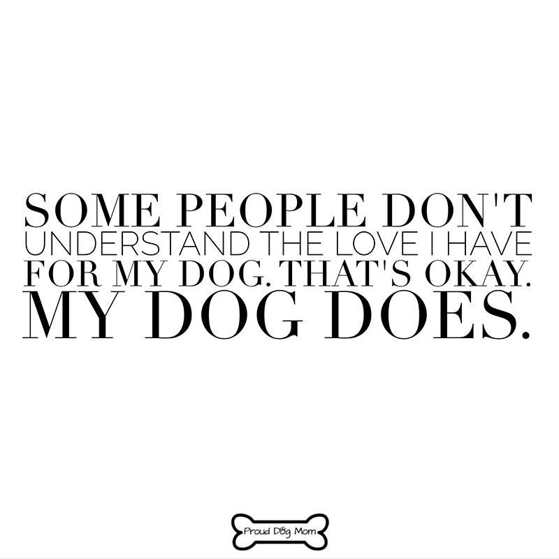 Love My Dog Quotes Classy 48 Relatable Dog Quotes That Will Warm Your Heart Proud Dog Mom