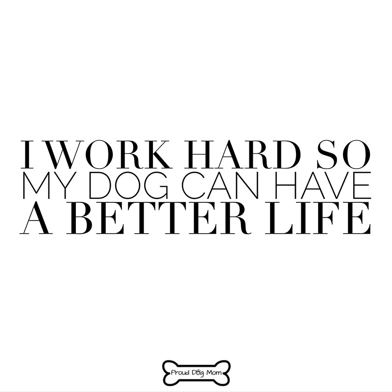 Dog Quotes - Work Hard