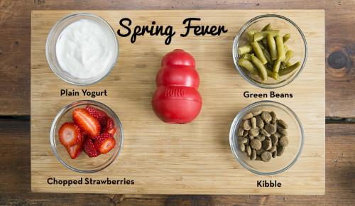 Spring Fever KONG Recipe