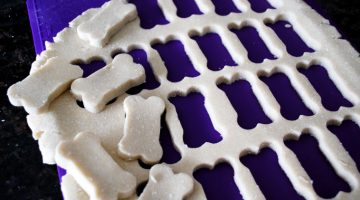 coconut-delight-dog-biscuits