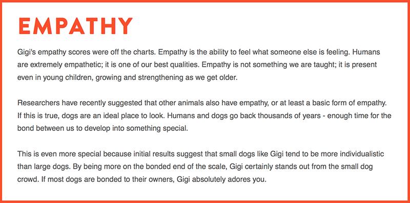 dognition-assessment-empathy-score