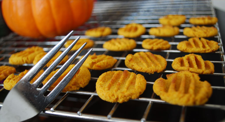 Recipe For Dog Treats Made With Pumpkin