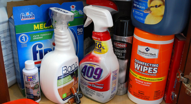 toxic-household-items