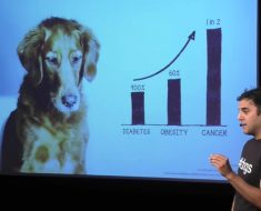 Dog diabetes, obesity, and cancer rates on the rise. In this inspiring TEDTalk, pet nutrition blogger Rodney Habib talks about the importance of diet!