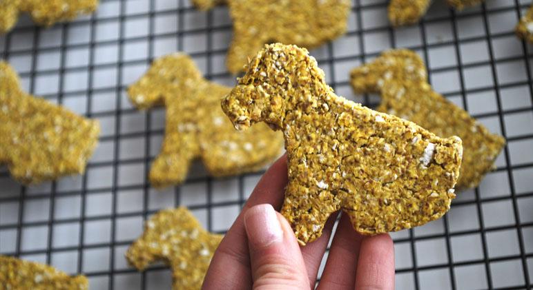 Dog Cookies Recipe Grain Free