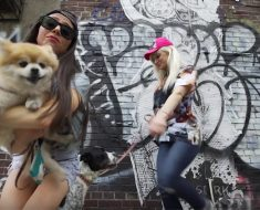 This hilarious Dog Mom Anthem created by BarkBox, a popular dog product delivery service, is one we can all relate to. Watch it here!