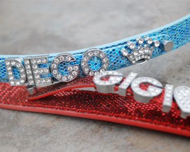 Looking for a fun collar that's bound to stand out? My personalized collars by Styleash Shop just arrived in the mail. Read my review!