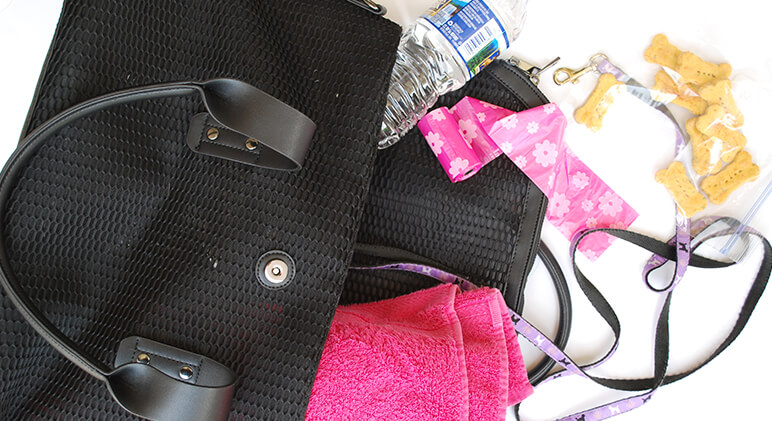 Whether you're heading to a nearby park, beach, or hiking trail, it's always a good idea to pack a dog bag! Check out Proud Dog Mom's list of 10 essentials.
