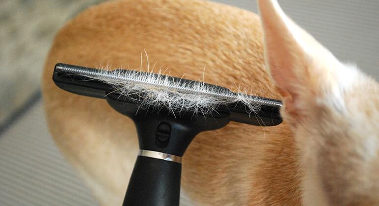 Review Omegapet De Shedding Brush Proud Dog Mom