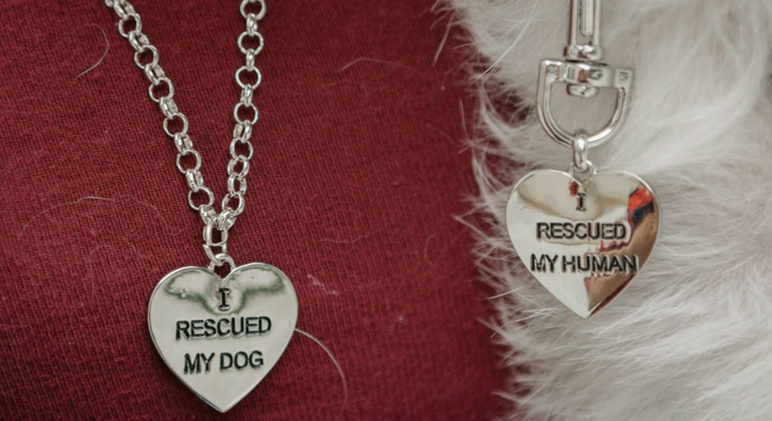 As the countdown to Christmas begins, check out this list of 6 gifts for dog lovers that also benefit shelter dogs! They're gifts that keep on giving.