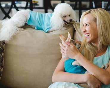It's time—February 20th is National Love Your Pet Day! Find out how the top 7 ways you can celebrate and honor your furry loved one!