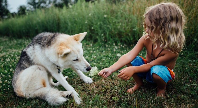 A death in the family is always difficult and, in many ways, the loss of a pet can be devastating. Here are tips to help your kids cope.