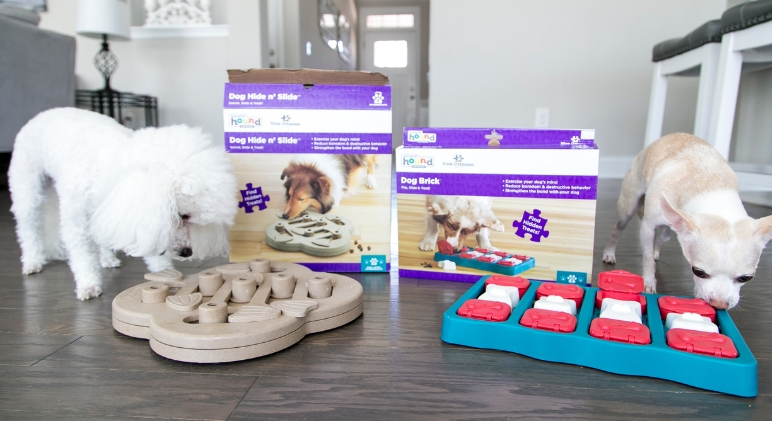 Dog puzzles and interactive games are a great way to mentally stimulate your pooch and beat boredom! Check out 11 fun puzzles that your dog will love.