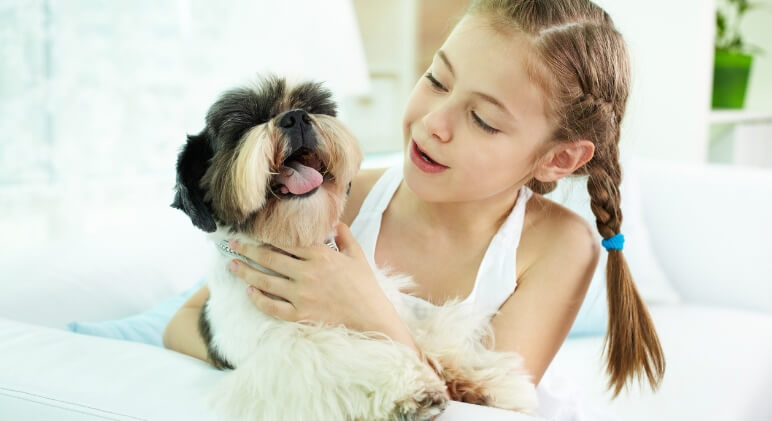 Have a child who loves dogs? If your kiddo craves to pet all the pups, check out this guide filled with 8 essential tips for how kids should greet dogs.