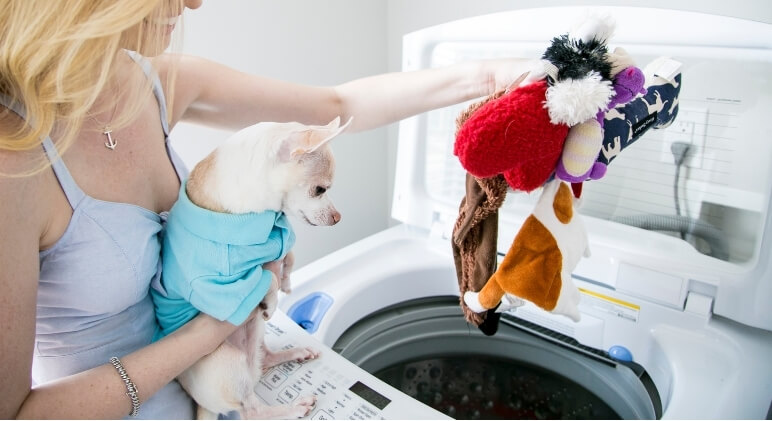 While my pups aren't big slobberers, their toys do still get dirty. Find out how to properly clean dog toys and see the top signs it's time to toss them.